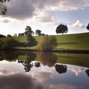 Rive de la Mayenne