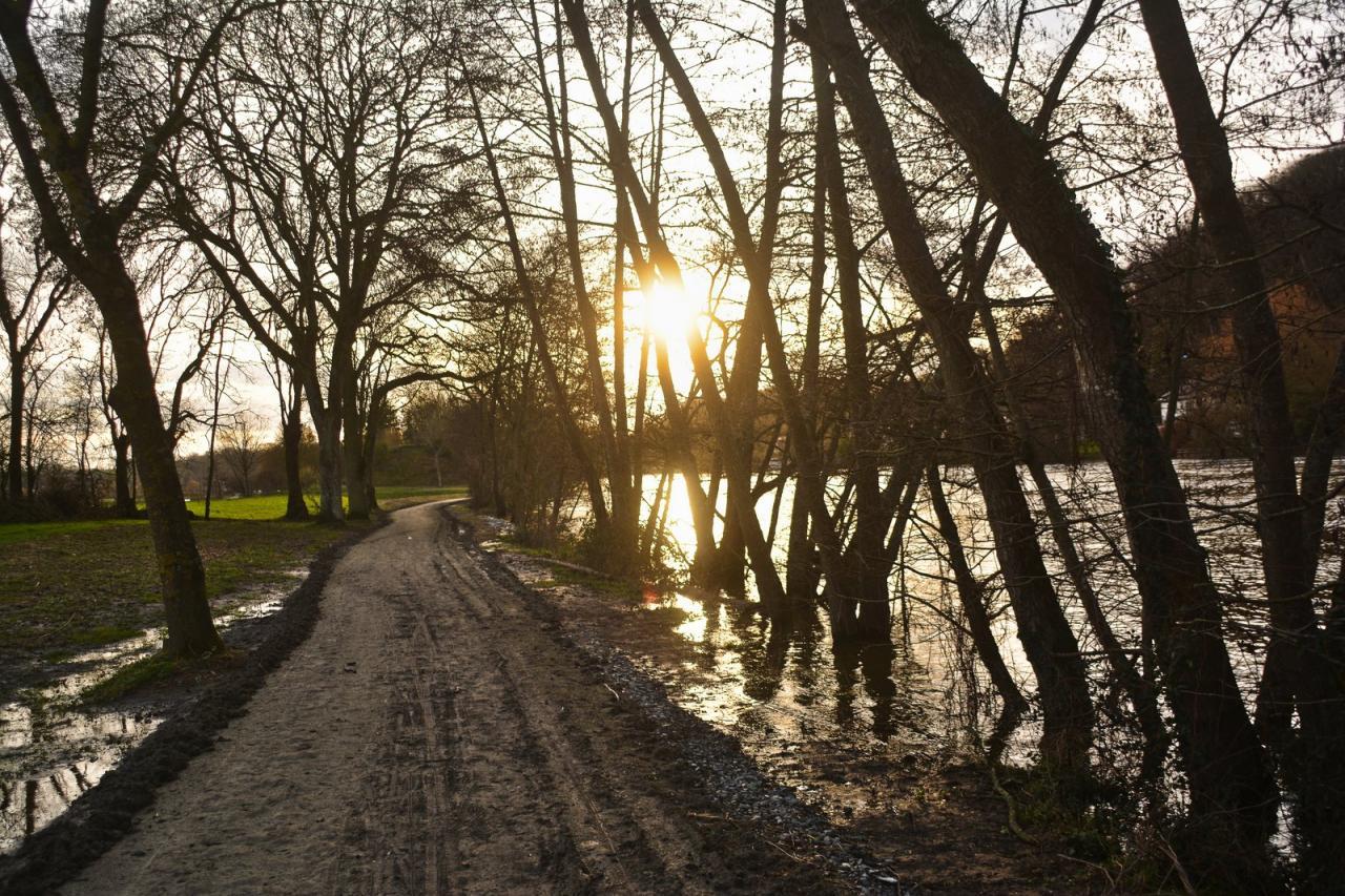 Chemin de halage de la Mayenne