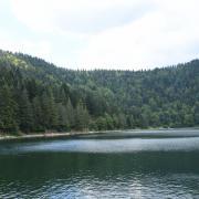 Vosges (lac des corbeaux)