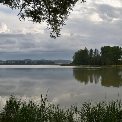 Moselle 2020 août