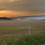 Très tôt le matin (Vosges)